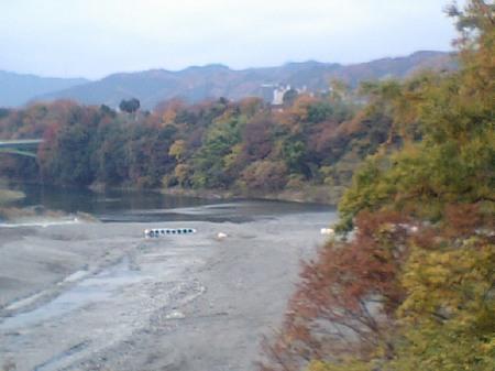 多摩川紅葉.JPG