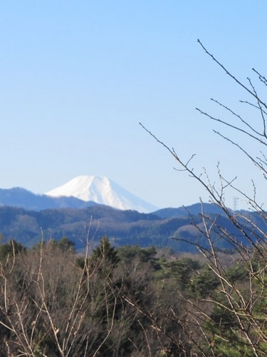 IMG_8273富士山.jpg